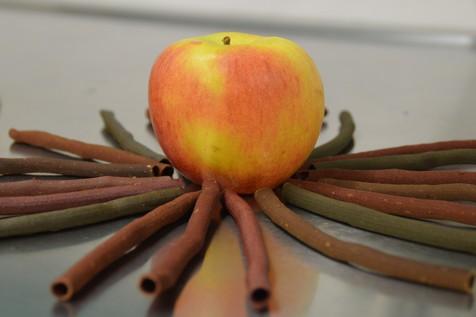 Eatapple in der Herstellung aus Apfelresten gemacht