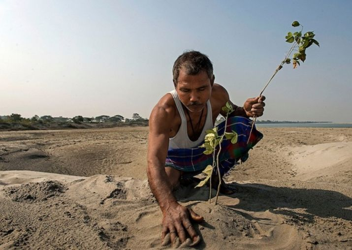 Jadev Payeng pflant einen Baum auf Majuli