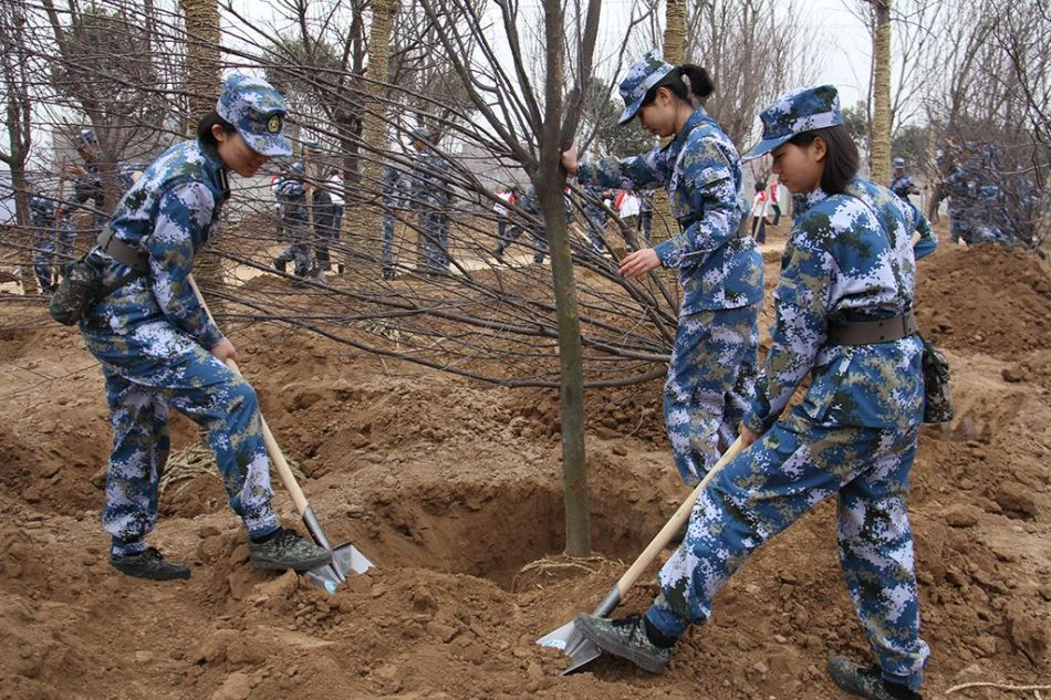 reforestation-armee-Chine