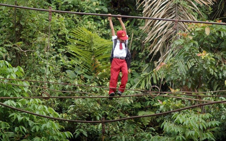 In Kolumbien haben 25 Kinder gegen die Abholzung des Regenwaldes geklagt
