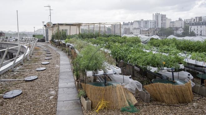Paris Action Climat Lachambeaudie Farm.jpeg